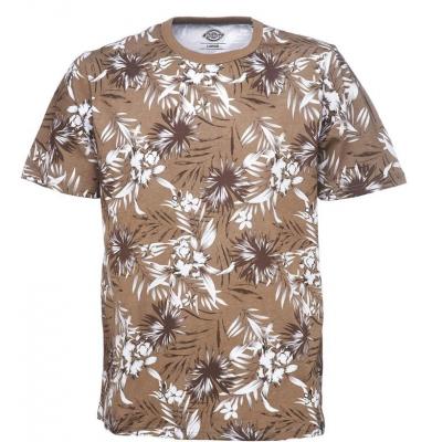 Koszulka DICKIES WARM SPRINGS Khaki