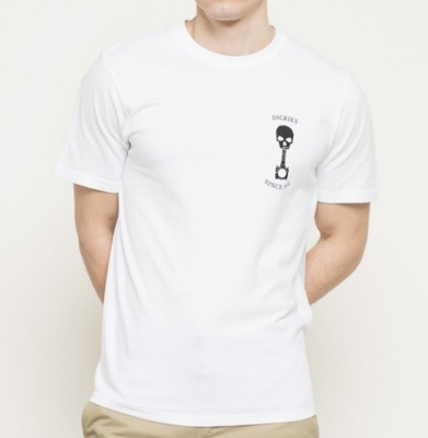 Koszulka DICKIES TURREL White