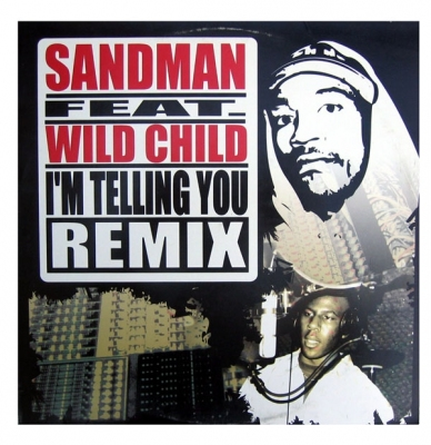 Vinyl Sandman feat. Wild Child - I'm Telling You (Remix)