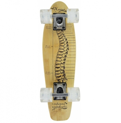 Deskorolka Fiszka CR2206B Spine