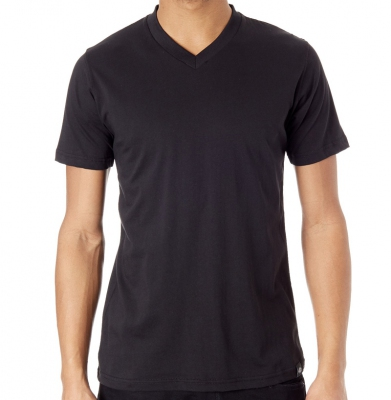 Koszulka DICKIES V-NECK Black